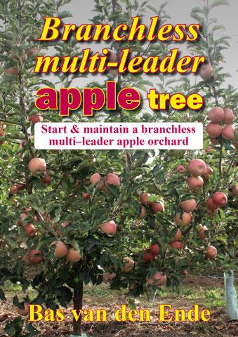 Apple Branchless multi-leader (buy)
