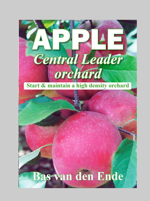 Apple Central Leader orchard (buy)