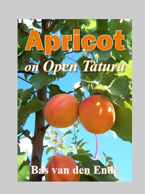Apricot on Open Tatura (buy)