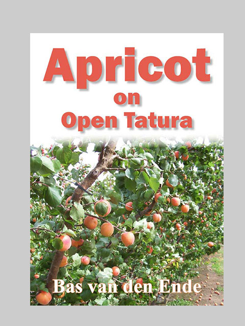 Apricot on Open Tatura (buy)