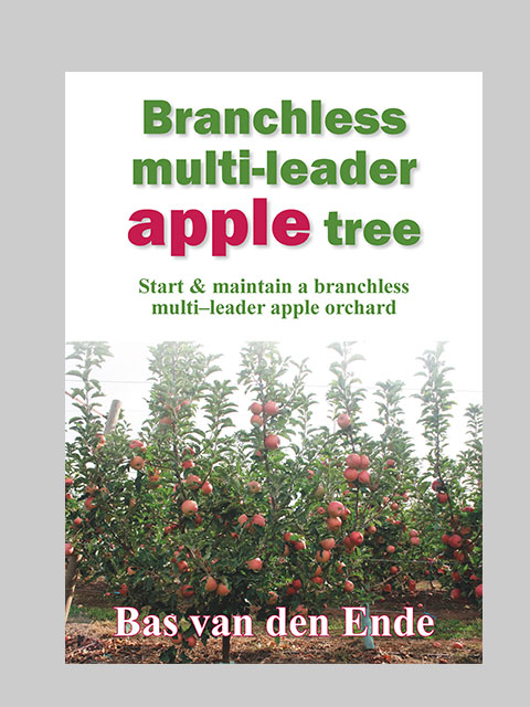 Apple Branchless multi-leader (buy)