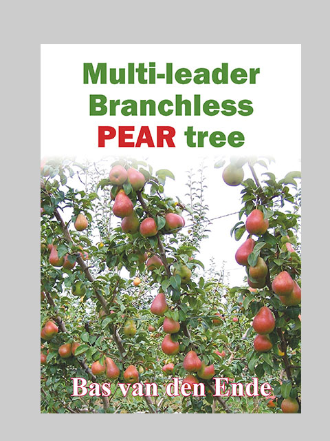 Pear Branchless multi-leader (buy)