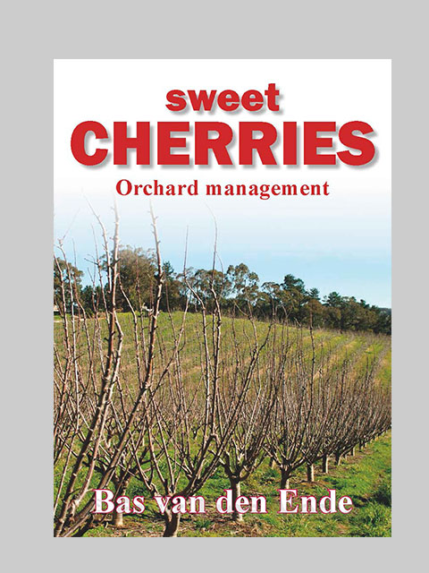 Cherries Management (buy)