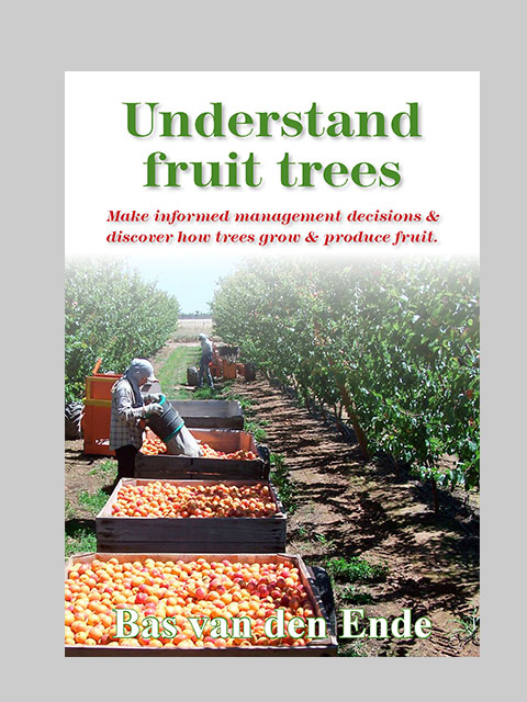 Understand fruit trees (buy)