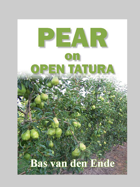 Pear on Open Tatura (buy)