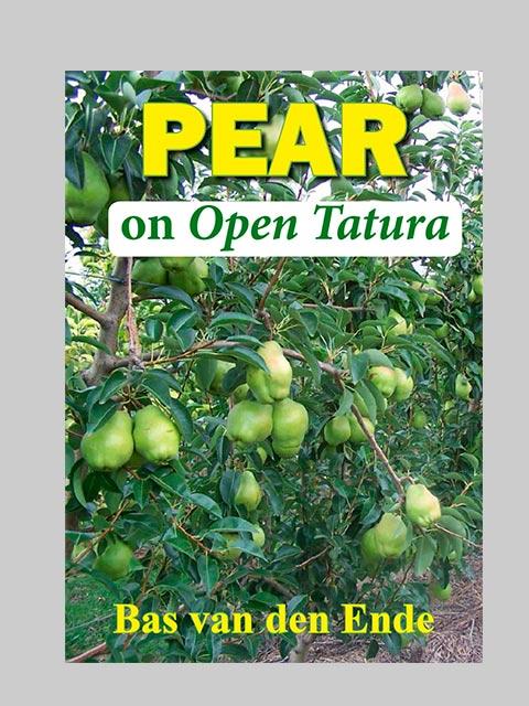 Pear on Open Tatura (buy)