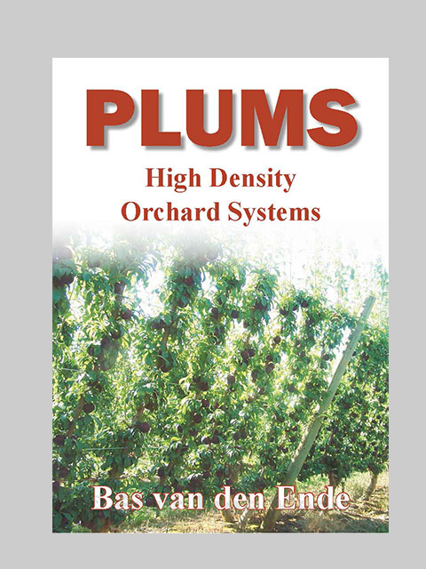 Plum high density systems (buy)