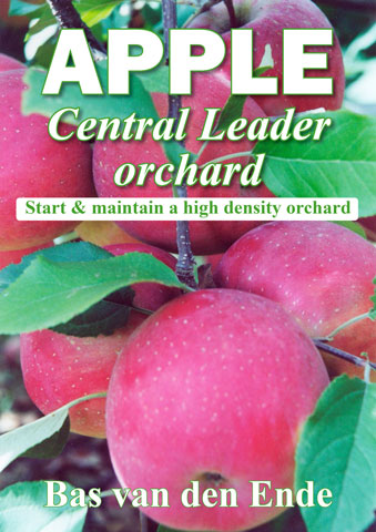 apple central Leader cover 07 2020