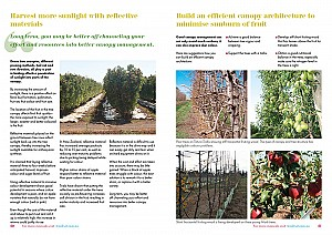 Understand fruit trees2